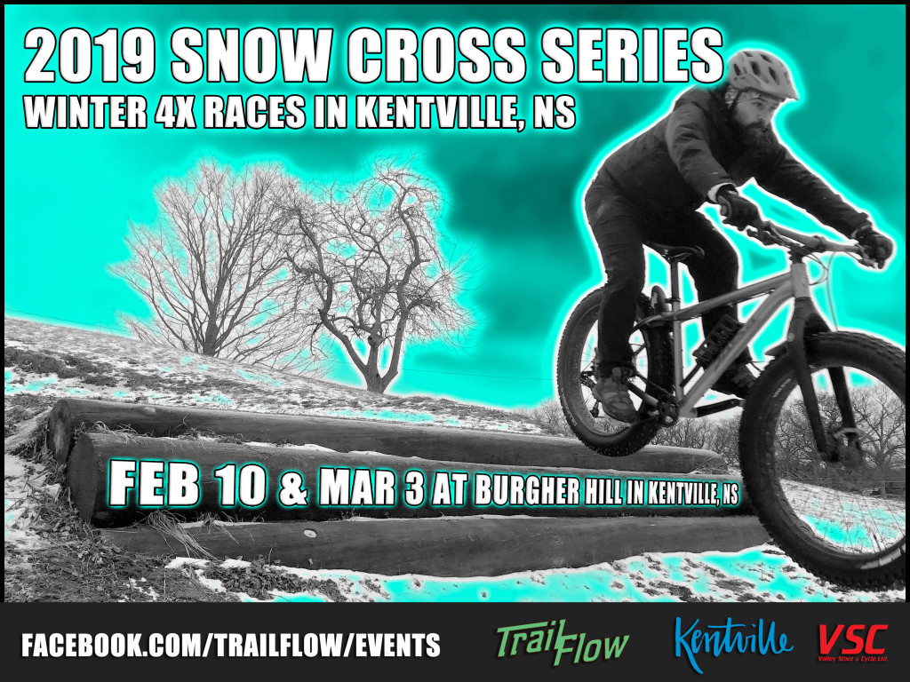 Snow Cross Poster